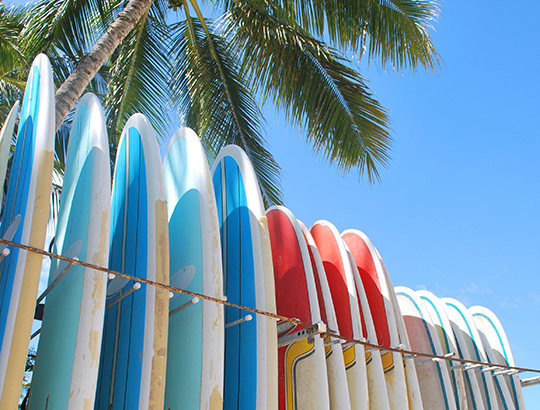 Rental surfboards available Action Sport Rental at the Bahia Resort Hotel