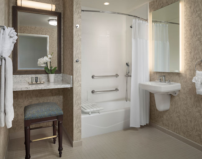 Bathroom Accessibility. Roll-In Shower,Shower Chair,Grab Rails